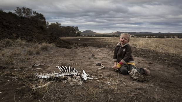 Harry Taylor plays with the bones of dead livestock on his family farm