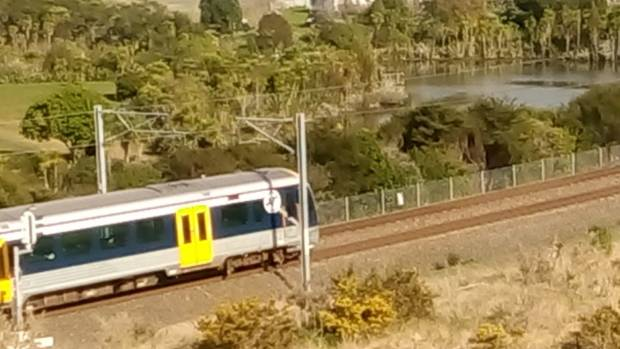 West Auckland train services were stopped after a pedestrian was hit and killed by a train in RÄnui on August 10.