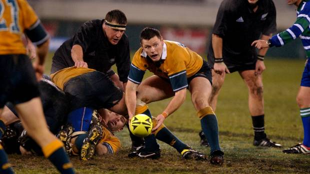 Wallabies ace Hooper fit for Bledisloe Cup