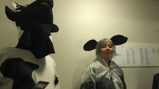 People dressed as cows protest inside a Dunedin office.