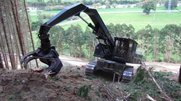 Machinery has taken over some jobs previously done by hand in forestry, but it has also introduced new risks.