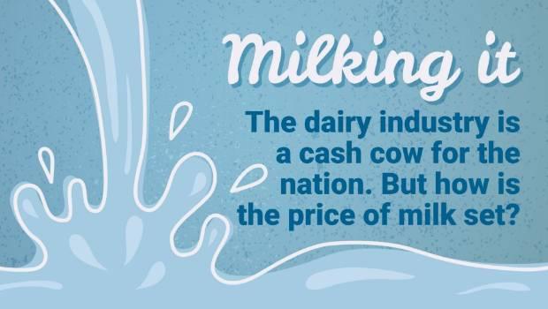 Milking it: NZ's milk price: Who's getting rich?   Stuff co nz
