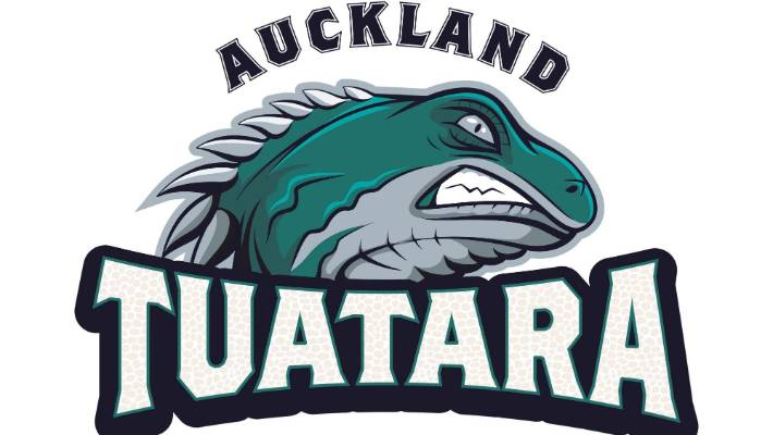 Auckland Tuatara planning for soft launch in first baseball season ...