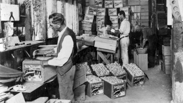 Gala apple variety creator James Hutton Kidd in his packing shed at Pinehaven Orchards in Greytown.