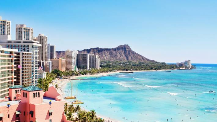 Would you prefer a trip to soak up the wildlife in Brisbane, or white sandy beaches in Hawaii?