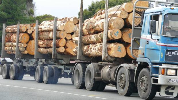 Logging companies have invested thousands of dollars in equipment to test drivers for sleep disorders in an effort to prevent fatigue-related accidents.