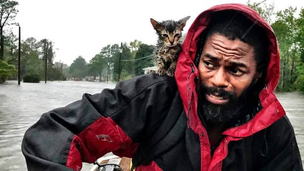 """Robert Simmons Jr. and his kitten """"Survivor"""" are rescued from floodwaters after Hurricane Florence dumped several inches of rain in the area overnight."""