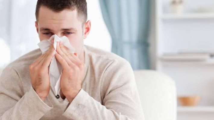 Key Ingredient For Universal Flu Vaccine May Be In Llama Antibodies
