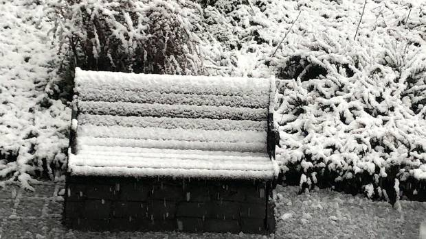 Wellingtonian Jason Thompson from was delight by the snowfall during his holiday trip to Queenstown celebrating his wife ...