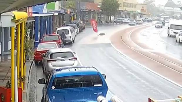 The dog slides over the busy street in Kawakawa and drags the flag.