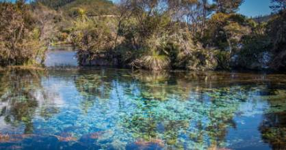 The Te Waikoropupu Springs are located near Takaka at the top of the South Island.