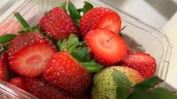 Drug trafficker owns operation at centre of strawberry scandal