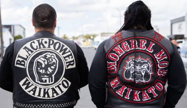 Black Power and Mongrel Mob Waikato are in talks to form a coalition as Australian bikie gangs look to establish in New ...