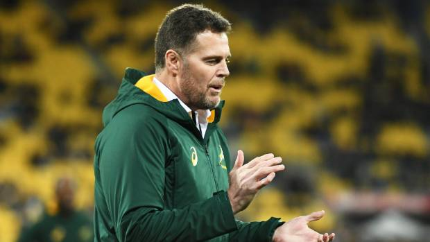 Read returns for All Blacks' Springboks clash