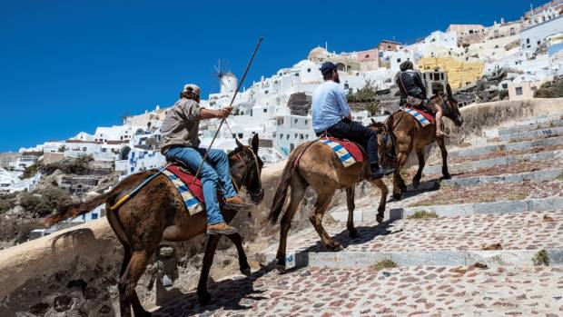 Full tourists were forbidden to ride on donkeys in Greece
