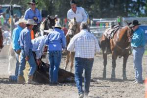 Rodeo workers surround the horse moments after the accident.