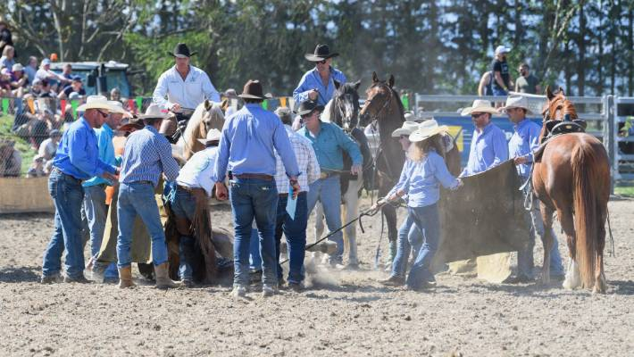 Horse Dies At Methven Rodeo Weeks After New Animal Safety