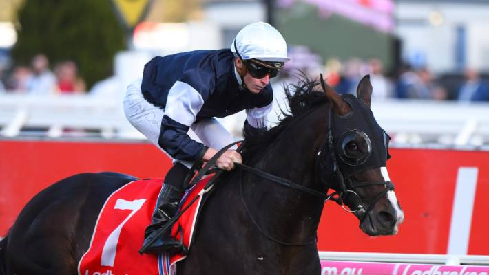 Charlie Appleby's Cross Counter breaks British duck in Melbourne Cup