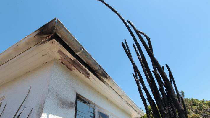 The remains of a tree in the front yard of a Blenheim house after a fire on Saturday night.