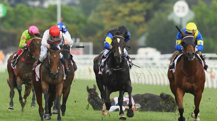 More Drama At Melbourne Cup Horse And Jockey Crash To The Ground
