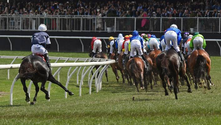 The Cliffsofmoher, left, pulls up lame during the Melbourne Cup at Flemington last month.