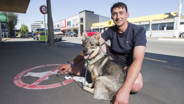 Councillor Jamie Arbuckle and Blue at the Market St sign which bars dogs from entering Blenheim's town centre.
