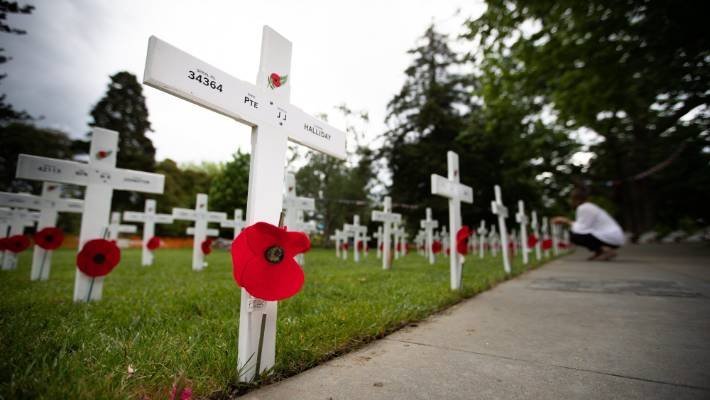 Three hundred white crosses will be displayed at Memorial Park in memory of the Hamilton people who died in the First World War as part of the Armistice Day centenary commemorations.