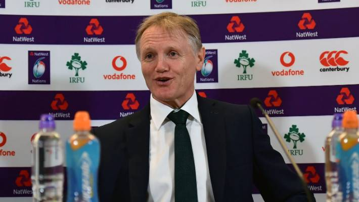 Joe Schmidt has brought huge success to the Irish rugby team