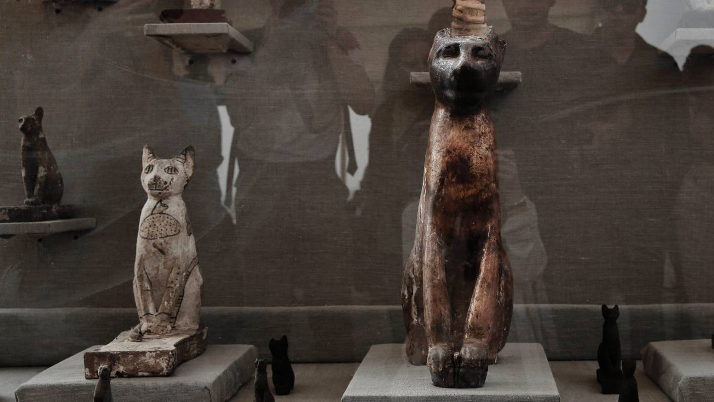 Dozens Of Cat Mummies Discovered In Egyptian Tomb Stuff