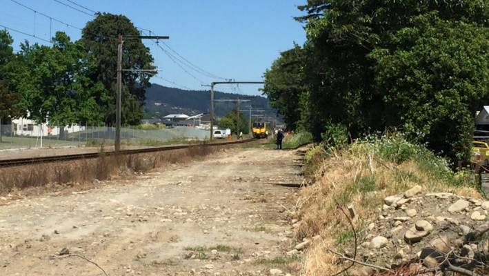 A person has died after being struck by a train near Wallaceville station in Upper Hutt.