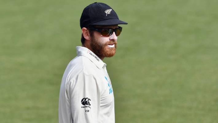 New Zealand fight back with Williamson fifty