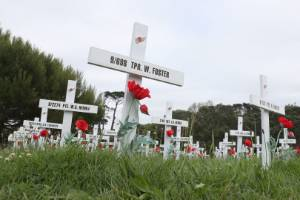 A cross for every Kiwi soldier who died in World War I was erected at the Auckland War Memorial Museum to mark the 100th ...