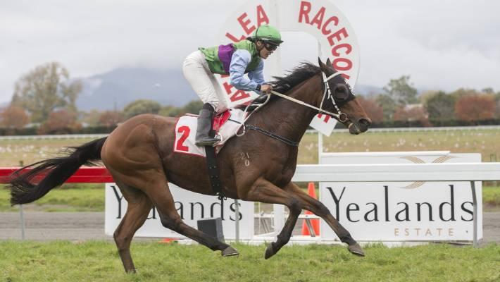 Jockey Zinjete Moki believes some horses are born to race.