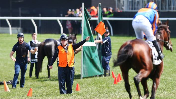 Horses are guided away from The Cliffsofmoher, who broke down in the Melbourne Cup in November.