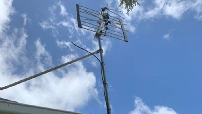 Lightning hit Natalie McNamara's television antenna in Blockhouse Bay on Tuesday.