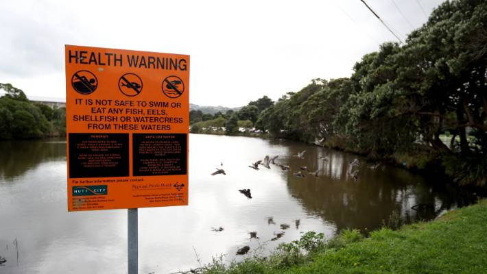 A health warning at Te Mome Stream - or Dead Man's Arm - that runs behind the Jackson St flats and beside Shandon Golf Club.