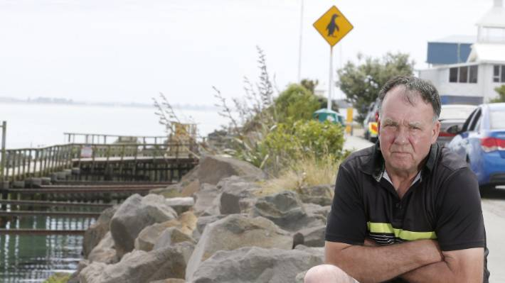 "Timaru Penguins co-ordinator Peter Bennett says the penguin was ""lined up"" by a motorist driving down Timaru's Marine Pde, at Caroline Bay."