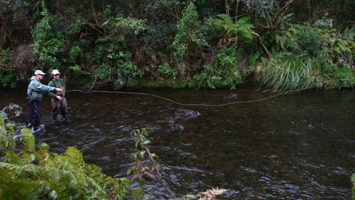 Fly fishing on the Hinemaiaia River, near Taupō.