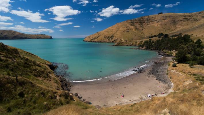 Perhaps the best picnic beach near Christchurch is Camp Bay, less than an hour from the city. Look out over Lyttelton Harbour and soak up some expected rays.