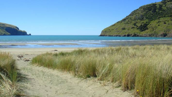 You'd struggle to drive any further east on Banks Peninsula than Le Bons Bay. The beach is bordered by rolling hills and a river where seals are often found frolicking.
