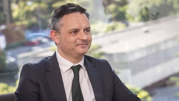 Green Party co-leader James Shaw attacked