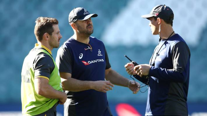 Australia parachute in Scott Johnson to help Michael Cheika after disastrous year