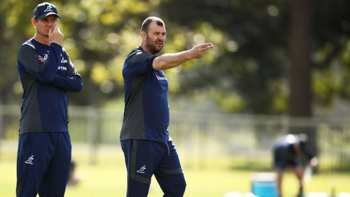 Michael Cheika to stay as Wallabies coach through World Cup