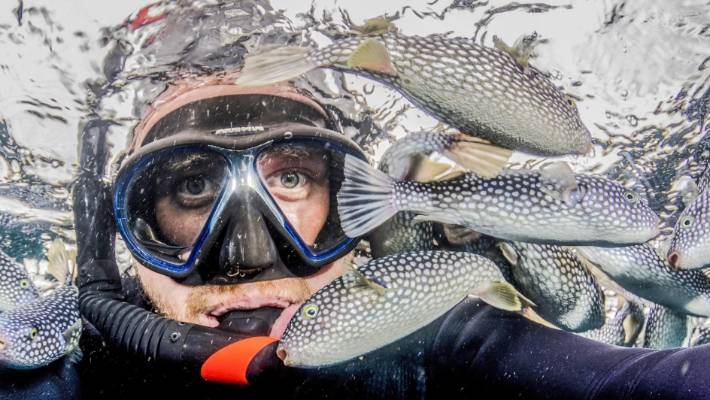 Crispin Middleton is a marine ecologist and national dive manager for Niwa. He is also an acclaimed underwater photographer and his work regularly appears in New Zealand Geographic, dive magazines, scientific journals and conservation/ government documents.