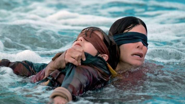 Have You Seen Bird Box Netflix Says 45 Million People Have Stuff