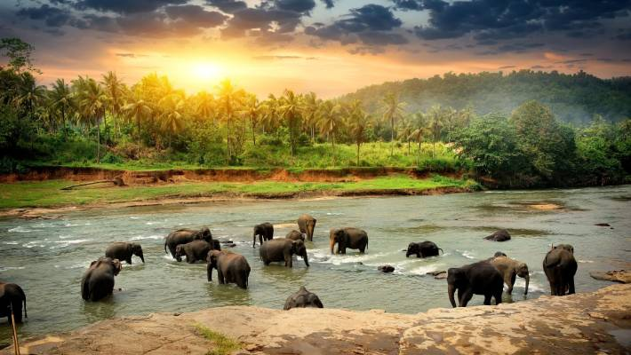 """Sri Lanka is well and truly """"having its moment in the equatorial sun"""" Lonely Planet author Ethan Gelber says."""