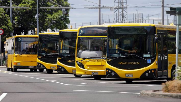 Some Wellington bus drivers will strike on Wednesday. (File photo)