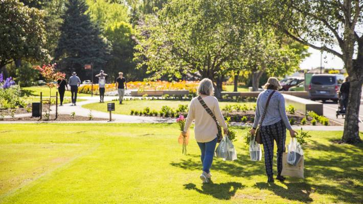 Pollard Park, in Blenheim, will be buzzing when the Summer Concert Series hits town on February 10.