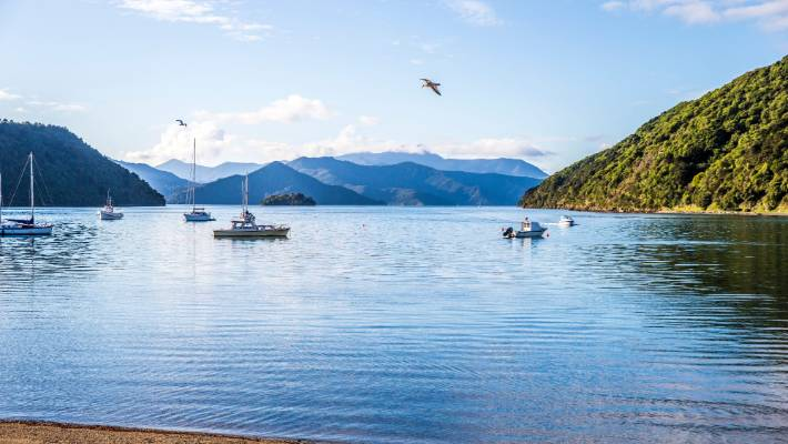 Punters will be able to use the drone technology to get a new perspective of the Picton Foreshore.