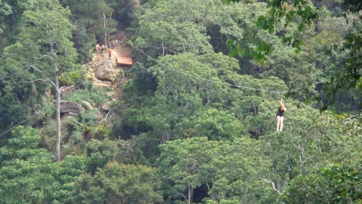 La Belle Verte Canopy Tours.